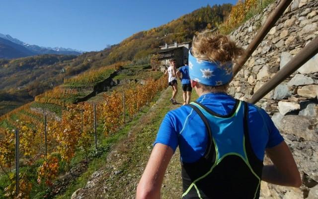 Valtellina Wine Trail 2015 – Sole, Vigne, Bitto e Trail Running