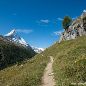 9 alternative all'Ultra Trail du Mont Blanc