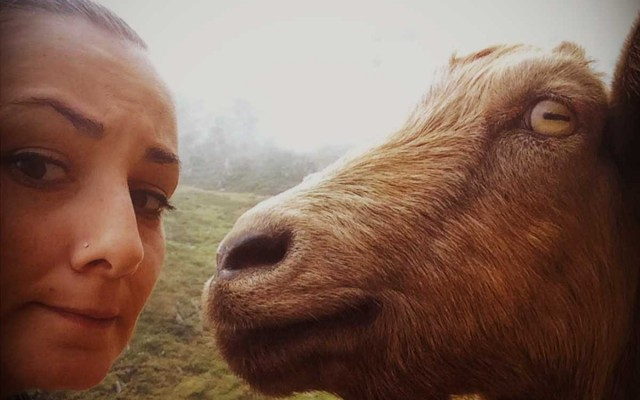Marathon Trail Lago di Como, Report di fatica, nebbia e incontri – writing @Arlec