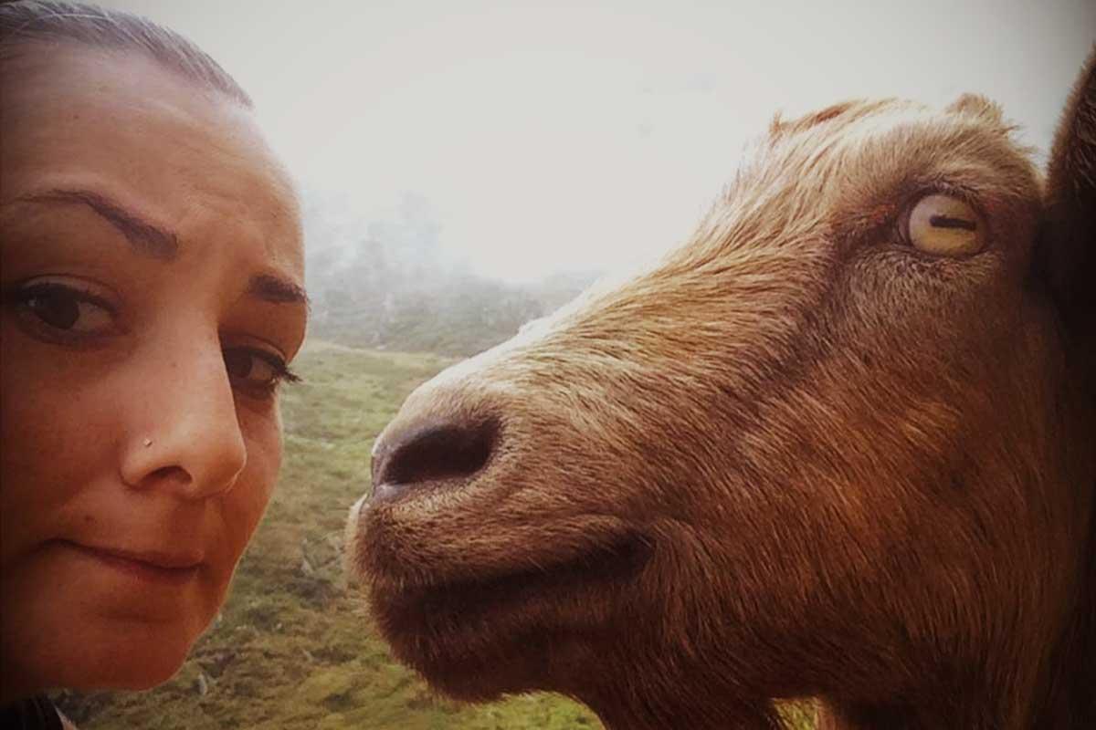 Arlec&Goat at Marathon trail