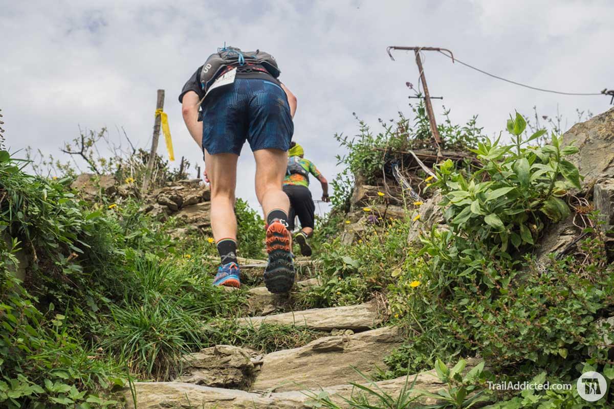 Da Manarola si rientra a Monterosso tra vigne e single track su e giù per scalinate interminabili!